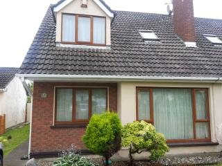 Clean and cozy double room near airport & city - Donabate vacation rentals