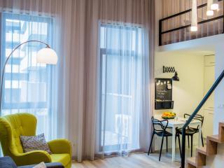 Stunning studio close to center - Wroclaw vacation rentals