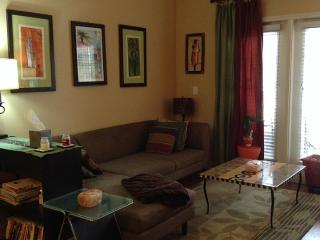 Luxury Condo 2BD/2BTH - Rockville vacation rentals
