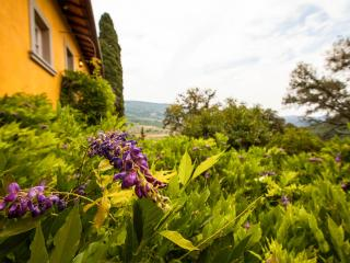 Charming Country Bed and Breakfast Close to Florence - Fiesole vacation rentals