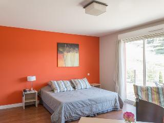 Nice 1BR Apt with swimming pool ! - Sete vacation rentals