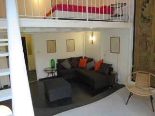 SANTO SPIRITO A  (cn) - Confort WIFI A/C -  (18) - Florence vacation rentals