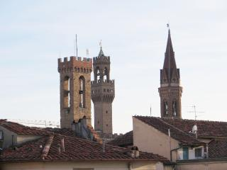 ORIUOLO - TERRACE WITH VIEW!!! (23) - Florence vacation rentals