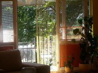 Charming Apartment - Sarajevo vacation rentals