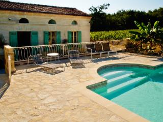 Blaye - Gite on vineyard, exclusive use  of pool - Blaye vacation rentals