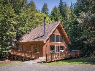 2BR home/w private hot tub; fireplace; Redwood access - Mendocino vacation rentals