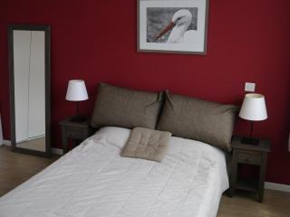Luxurious Apt - Prime location - Colmar vacation rentals