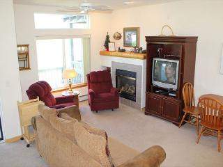 BRR120C Attractive Townhouse w/Garage, Wifi, Fireplace, Pet Friendly - Silverthorne vacation rentals