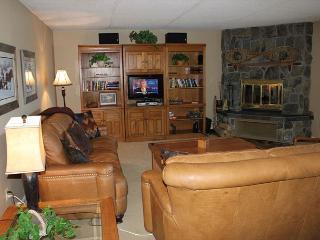 3 Bedroom - Great Lake View - Dillon vacation rentals