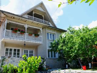 Trotus Villa - Bacau County vacation rentals