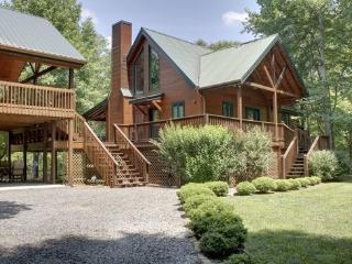 TOCCOA RIVER RESORT- BEAUTIFUL 4BR/3BA CABIN ON THE TOCCOA RIVER, SLEEPS 11, LUXURY CABIN, POOL TABLE, GAS LOG FIREPLACE, GAS GRILL, WIFI, PET FRIENDLY, $275/NIGHT! - Blue Ridge vacation rentals