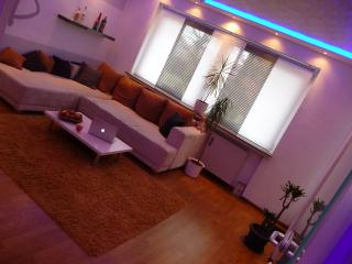 2,5 Zimmer Wohnung, Balkon, 1-4Pers - Hannover vacation rentals