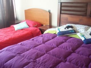 Departamento Cavancha 2 Ambientes - 167772 - Iquique vacation rentals