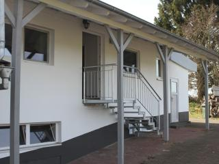 Modern apartment near Laubach Castle with view over ponds, BBQ terrace and WiFi - Laubach vacation rentals