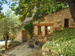 Charming studio in the Provençal Alps with BBQ terrace – ideal for hiking & mountain biking - Cruis vacation rentals