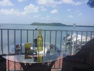 Vibrant studio apartment in Grande-Terre, Guadeloupe, with WiFi, sun terrace and breath-taking view - Morne-A-l'Eau vacation rentals