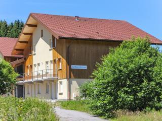 Modern apartment in the Vosges w/ central heating & mountain-view terrace, near ski & Longemer Lake - Xonrupt-Longemer vacation rentals