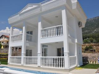 Angel Devine Gold - Oludeniz vacation rentals