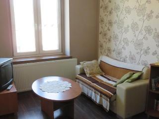Apartment Aleksander - Lodz vacation rentals