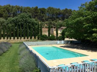 Three Houses with Pool and Tennis on Grounds of Chateau - Aix-en-Provence vacation rentals