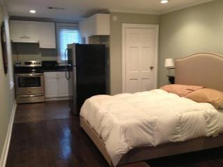 small renovated 1 bed apt with private yard pet ok - Atlanta vacation rentals