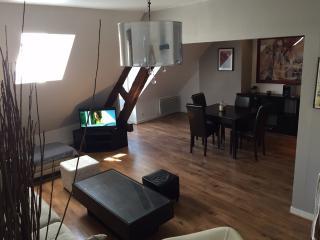 Appartement Cosy Rue de Paris - Auxerre vacation rentals