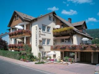 Hotel Ursula garni - Bad Brückenau vacation rentals