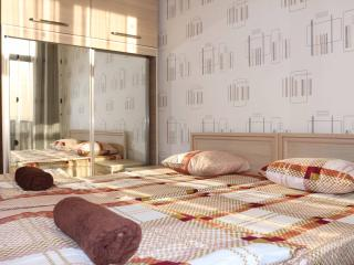 Comfortable 2 Bedrooms Apartment in Tbilisi - Tbilisi vacation rentals