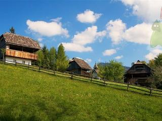 Holiday home in the  nature - renovated granaries, - Luce vacation rentals