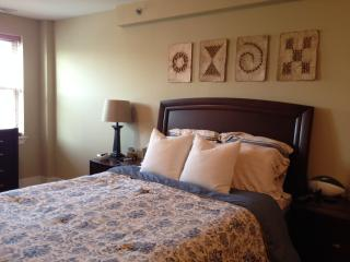 Perfect 2BR with roofdeck steps from the Pope! - Philadelphia vacation rentals