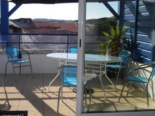 appartement - Vieux-Boucau-les-Bains vacation rentals