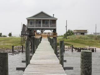 Greener Pastures - New Orleans vacation rentals