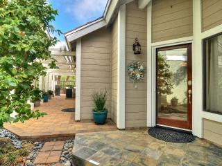 Grand Open Special! 8/10-9/3 $1095/Week! Jacuzzi! - Dana Point vacation rentals