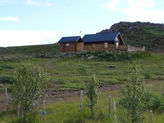 Cedar Log Cabin, 4 bed, Golden Circle, Iceland - Selfoss vacation rentals