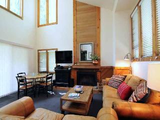 Greyhawk Condominiums 16 - Ketchum vacation rentals