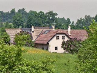 Wald-Land-Hof - Schloss Rosenau vacation rentals