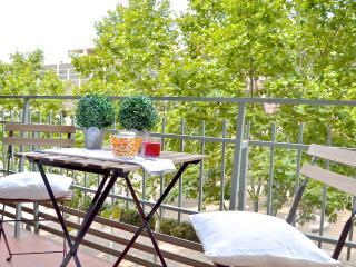 Spacious and quiet apartment!!! - Barcelona vacation rentals