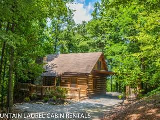 TURKEY TROT-4BR/3BA, SLEEPS 10, HOT TUB, POOL TABLE, GAS LOG FIREPLACE, LARGE DECK, SCREENED IN PORCH, $180/NIGHT! - Blue Ridge vacation rentals