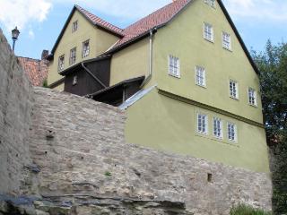Moderner Komfort in historischem Ambiente - Kahla vacation rentals