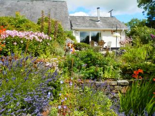 Pen Y Garn Cottage - Foelgastell vacation rentals