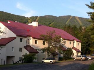 Mountainside Condo at Sugarbush Vt Ski in/Ski out! - Warren vacation rentals