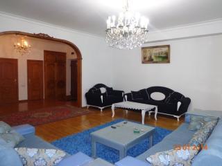 Apartment in The Center of Baku - Baku vacation rentals