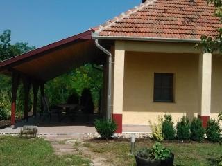 Ferienhaus Ostungarn mit Terasse und Garten - Borsod-Abauj-Zemplen County vacation rentals