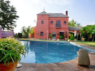 Spectacular Holiday Villa, countryside of Seville - La Puebla de Cazalla vacation rentals