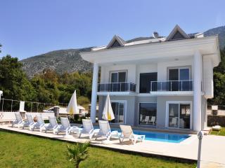 Angel  View Villa A1 - Fethiye vacation rentals