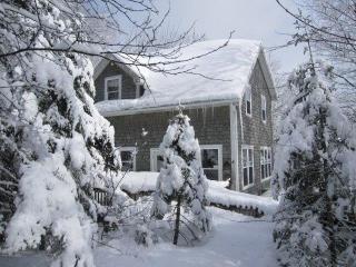 Lake front paradise - Windsor vacation rentals