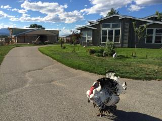 Jefferson Farms Natural Fibers - Salida vacation rentals