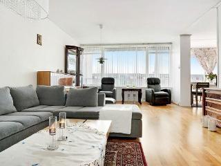 Big apartment - Sandnes vacation rentals