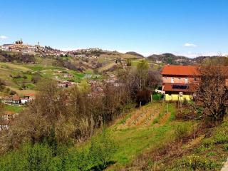 LA TERRAZZA I - FARMSTEAD IN ROERO ( Pool at Exclusive Country Club) - Cisterna d'Asti vacation rentals