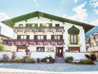 Family friendly apartment house in Zell am See - Zell am See vacation rentals